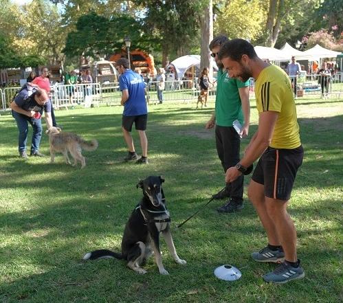 Festa Animal de Oeiras 2019